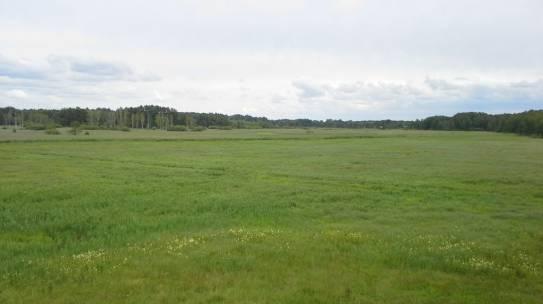 Złagodzenie ograniczeń w zakresie obrotu nieruchomościami rolnymi