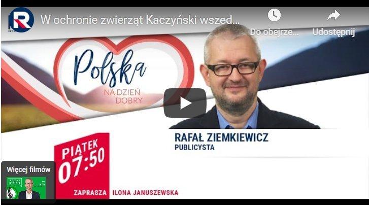 W ochronie zwierząt Kaczyński wszedł w narrację lewicy – R. Ziemkiewicz | Polska na Dzień Dobry